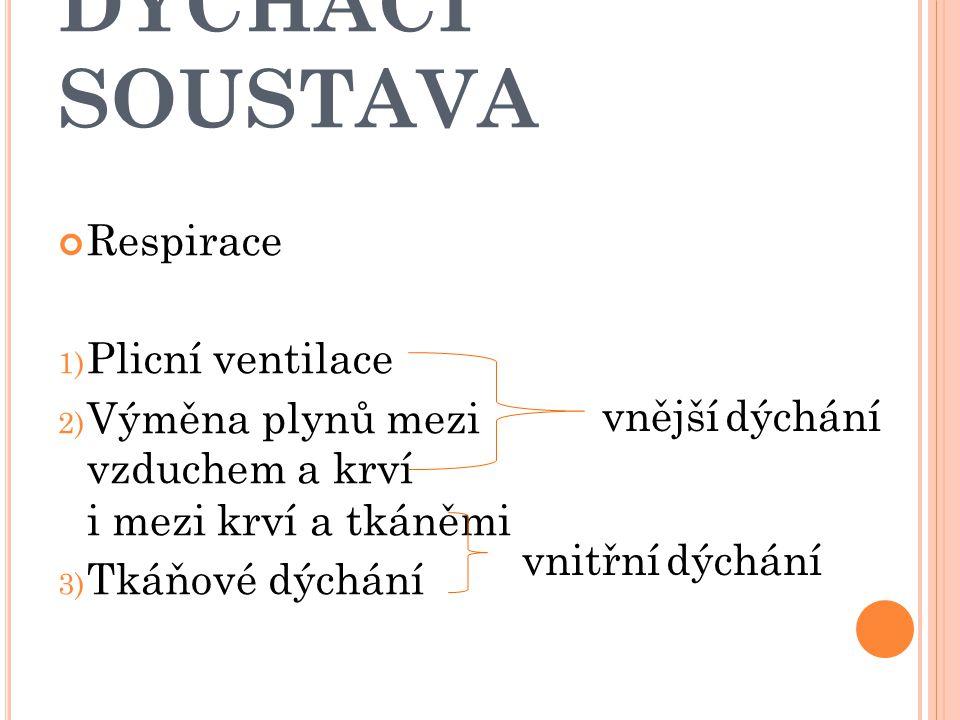 Respirace 1) Plicní ventilace 2) Výměna plynů mezi vzduchem a krví i mezi krví a tkáněmi 3) Tkáňové dýchání vnější dýchání vnitřní dýchání