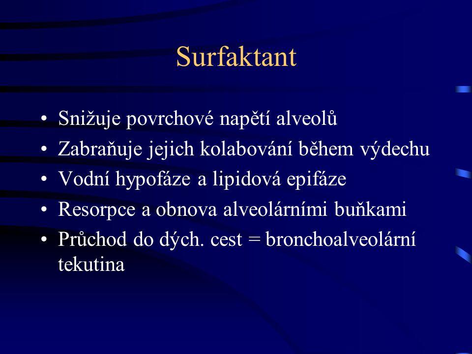 Surfaktant Snižuje povrchové napětí alveolů Zabraňuje jejich kolabování během výdechu Vodní hypofáze a lipidová epifáze Resorpce a obnova alveolárními