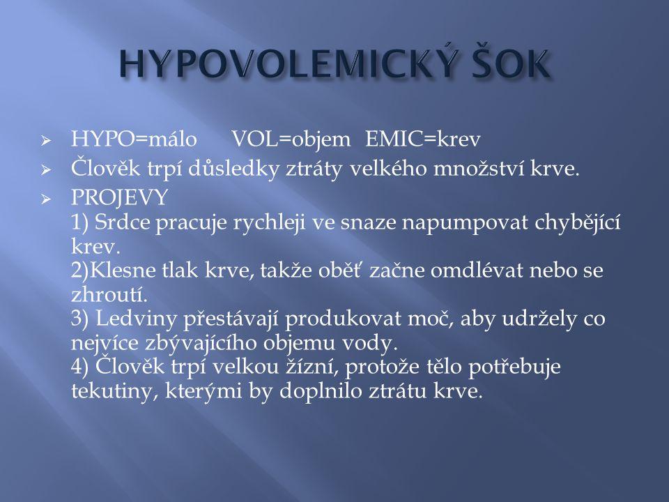  HYPO=máloVOL=objemEMIC=krev  Člověk trpí důsledky ztráty velkého množství krve.