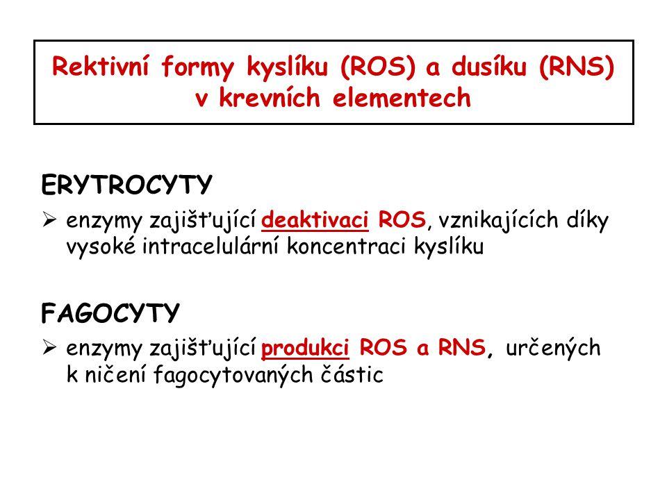 Rektivní formy kyslíku (ROS) a dusíku (RNS) v krevních elementech ERYTROCYTY  enzymy zajišťující deaktivaci ROS, vznikajících díky vysoké intracelulá