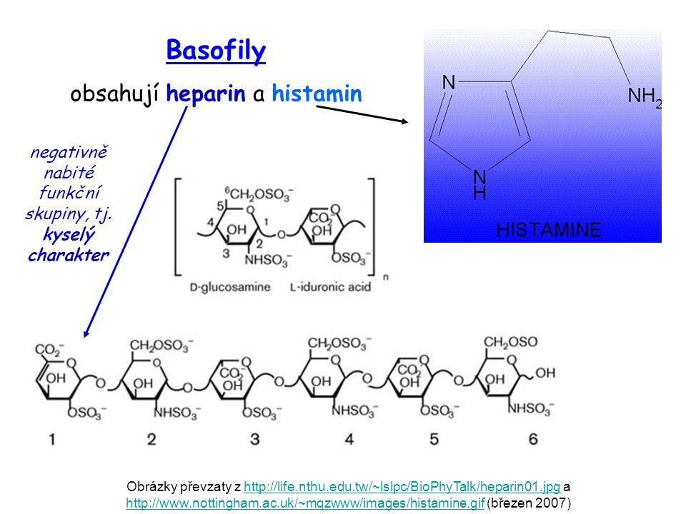 Obrázky převzaty z http://life.nthu.edu.tw/~lslpc/BioPhyTalk/heparin01.jpg a http://www.nottingham.ac.uk/~mqzwww/images/histamine.gif (březen 2007)htt