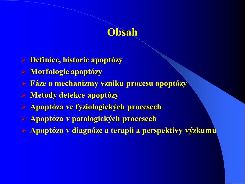 Obsah  Definice, historie apoptózy  Morfologie apoptózy  Fáze a mechanizmy vzniku procesu apoptózy  Metody detekce apoptózy  Apoptóza ve fyziologických procesech  Apoptóza v patologických procesech  Apoptóza v diagnóze a terapii a perspektivy výzkumu