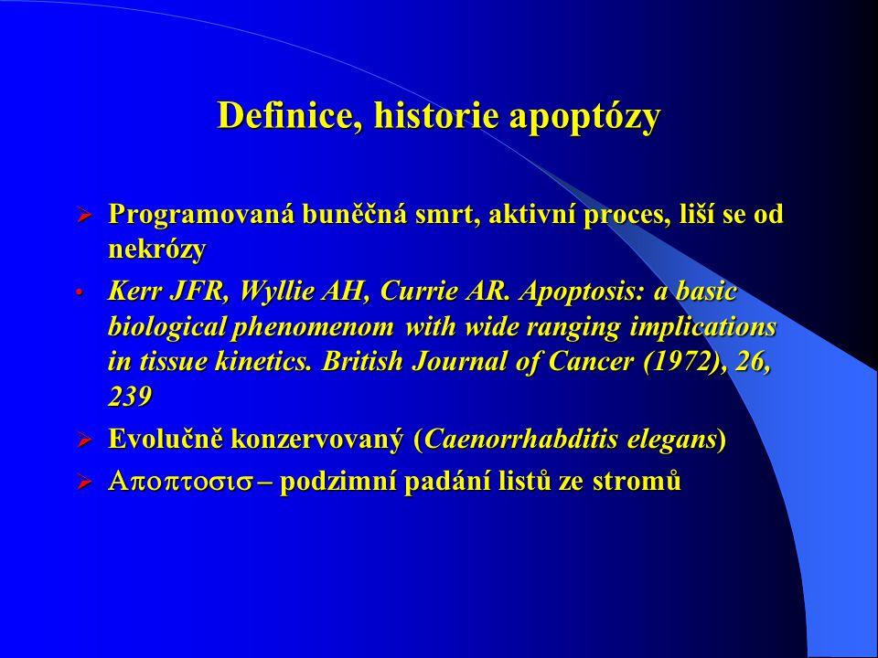 Definice, historie apoptózy  Programovaná buněčná smrt, aktivní proces, liší se od nekrózy Kerr JFR, Wyllie AH, Currie AR. Apoptosis: a basic biologi