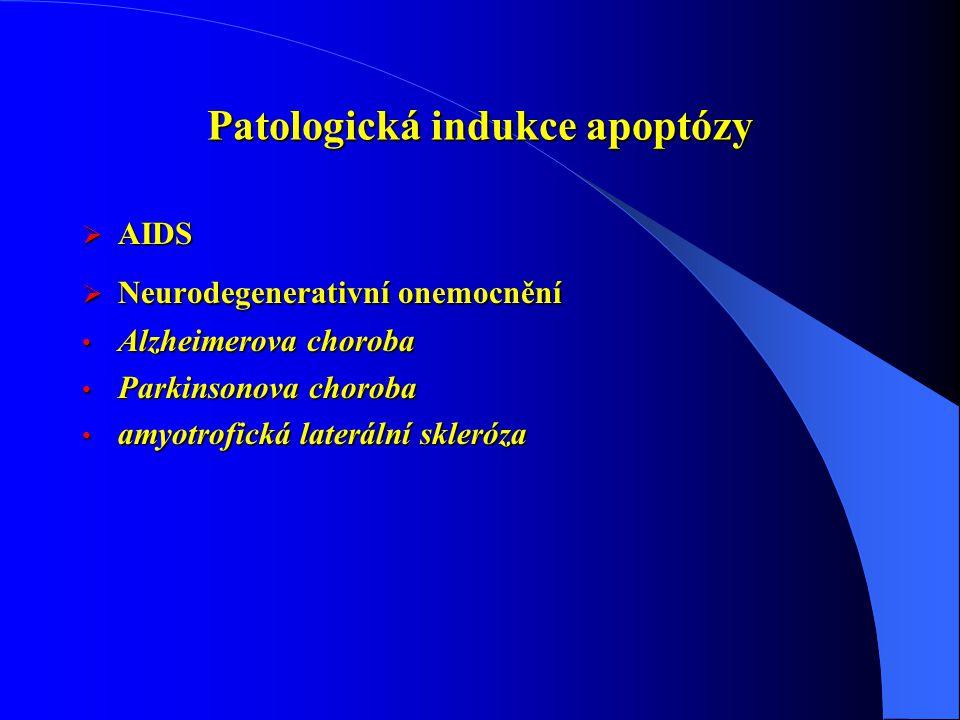 Patologická indukce apoptózy  AIDS  Neurodegenerativní onemocnění Alzheimerova choroba Alzheimerova choroba Parkinsonova choroba Parkinsonova choroba amyotrofická laterální skleróza amyotrofická laterální skleróza