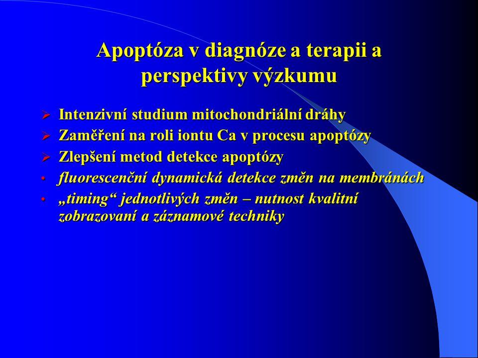 Apoptóza v diagnóze a terapii a perspektivy výzkumu  Intenzivní studium mitochondriální dráhy  Zaměření na roli iontu Ca v procesu apoptózy  Zlepše