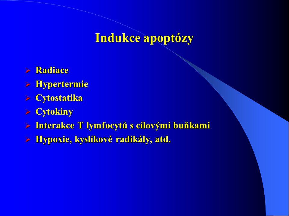 Indukce apoptózy  Radiace  Hypertermie  Cytostatika  Cytokiny  Interakce T lymfocytů s cílovými buňkami  Hypoxie, kyslíkové radikály, atd.