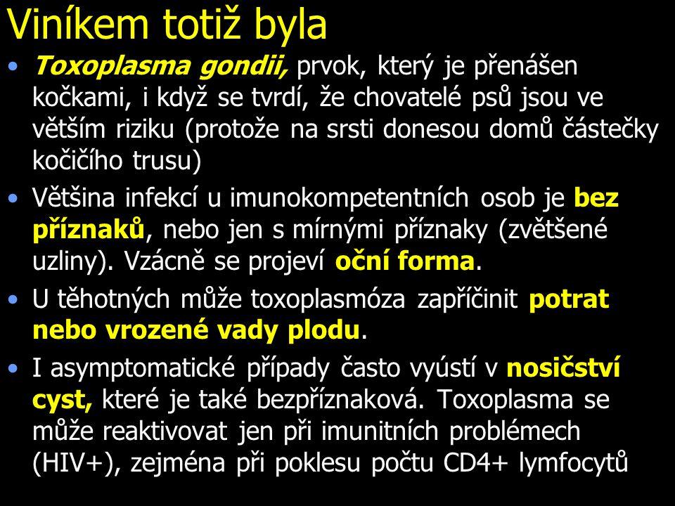 Viníkem totiž byla Toxoplasma gondii, prvok, který je přenášen kočkami, i když se tvrdí, že chovatelé psů jsou ve větším riziku (protože na srsti donesou domů částečky kočičího trusu) Většina infekcí u imunokompetentních osob je bez příznaků, nebo jen s mírnými příznaky (zvětšené uzliny).