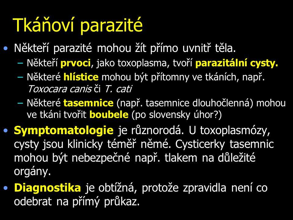 Tkáňoví parazité Někteří parazité mohou žít přímo uvnitř těla. –Někteří prvoci, jako toxoplasma, tvoří parazitální cysty. –Některé hlístice mohou být