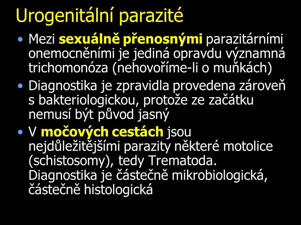 Urogenitální parazité Mezi sexuálně přenosnými parazitárními onemocněními je jediná opravdu významná trichomonóza (nehovoříme-li o muňkách) Diagnostika je zpravidla provedena zároveň s bakteriologickou, protože ze začátku nemusí být původ jasný V močových cestách jsou nejdůležitějšími parazity některé motolice (schistosomy), tedy Trematoda.