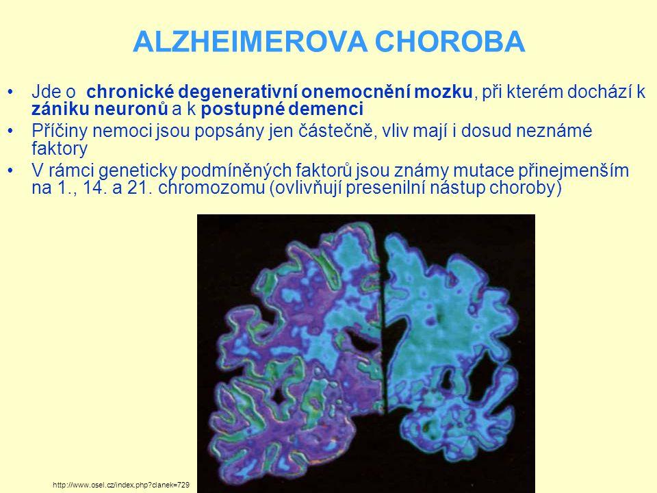 ALZHEIMEROVA CHOROBA Jde o chronické degenerativní onemocnění mozku, při kterém dochází k zániku neuronů a k postupné demenci Příčiny nemoci jsou popsány jen částečně, vliv mají i dosud neznámé faktory V rámci geneticky podmíněných faktorů jsou známy mutace přinejmenším na 1., 14.