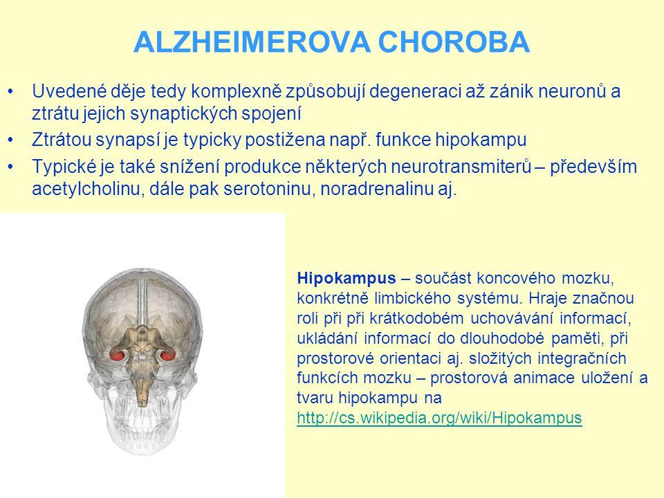 ALZHEIMEROVA CHOROBA Uvedené děje tedy komplexně způsobují degeneraci až zánik neuronů a ztrátu jejich synaptických spojení Ztrátou synapsí je typicky