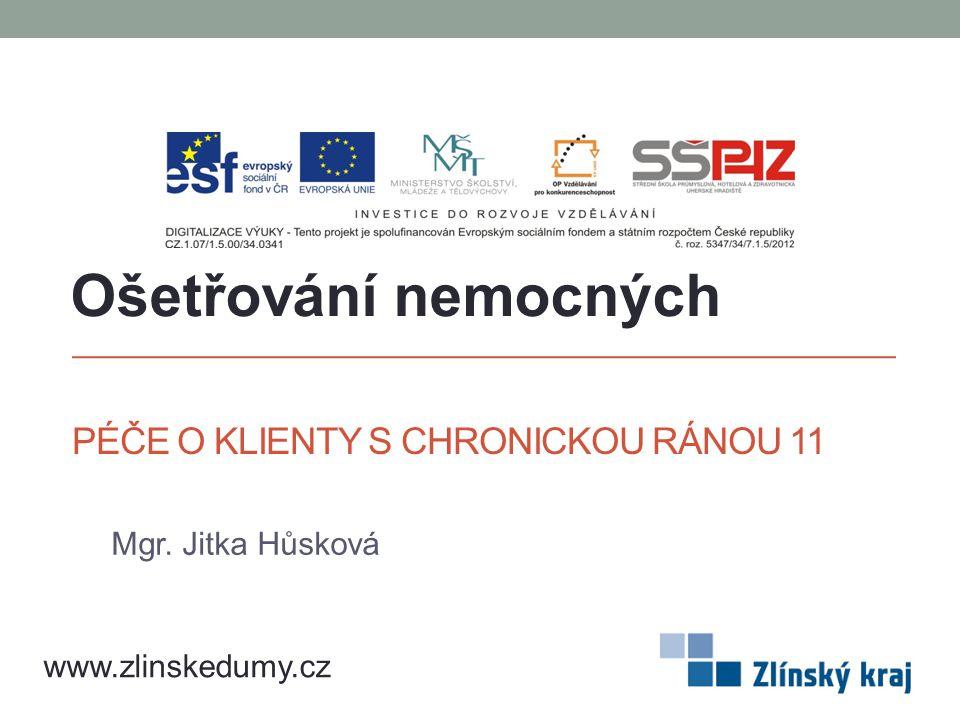 PÉČE O KLIENTY S CHRONICKOU RÁNOU 11 Mgr. Jitka Hůsková Ošetřování nemocných www.zlinskedumy.cz