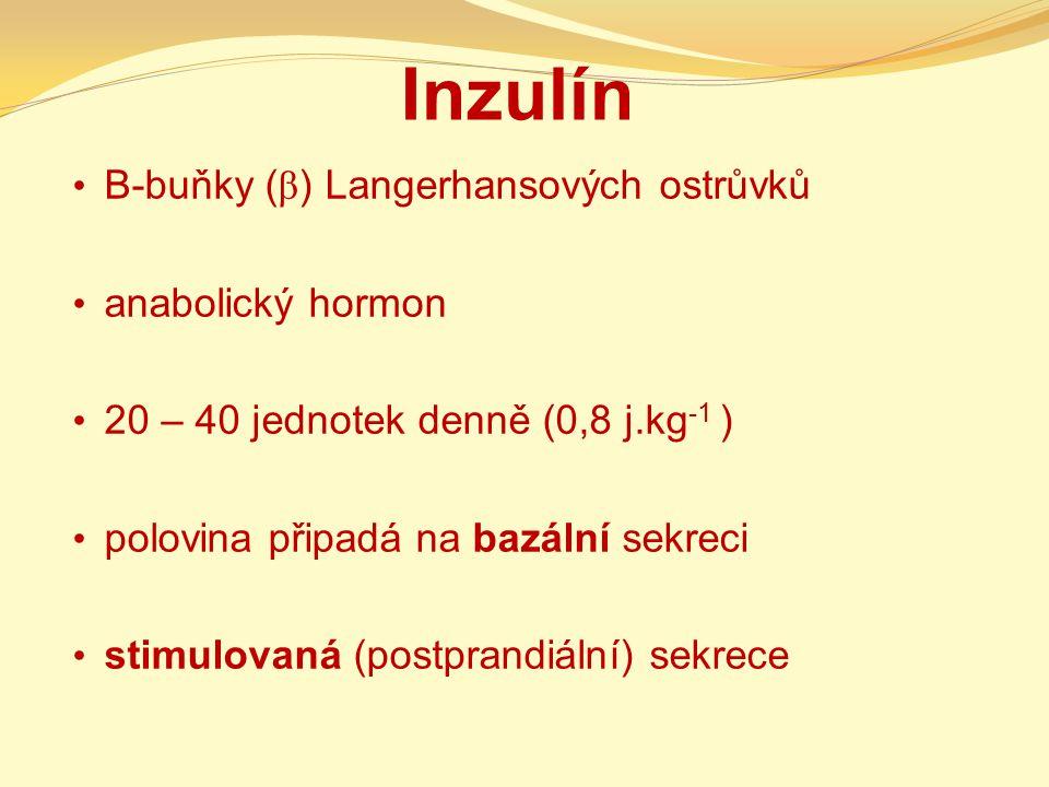 Inzulín B-buňky ( β ) Langerhansových ostrůvků anabolický hormon 20 – 40 jednotek denně (0,8 j.kg -1 ) polovina připadá na bazální sekreci stimulovaná