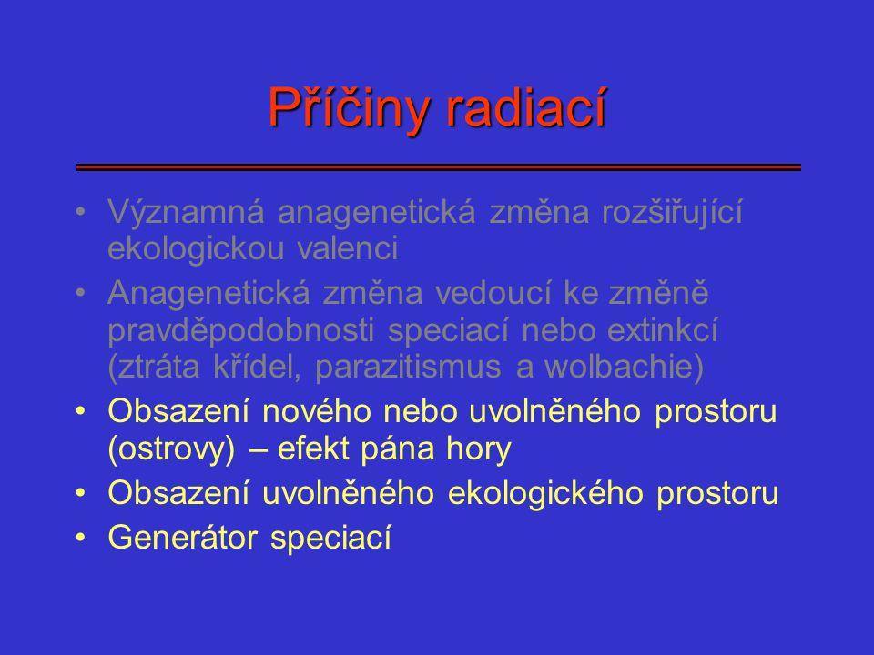 Příčiny radiací Významná anagenetická změna rozšiřující ekologickou valenci Anagenetická změna vedoucí ke změně pravděpodobnosti speciací nebo extinkc