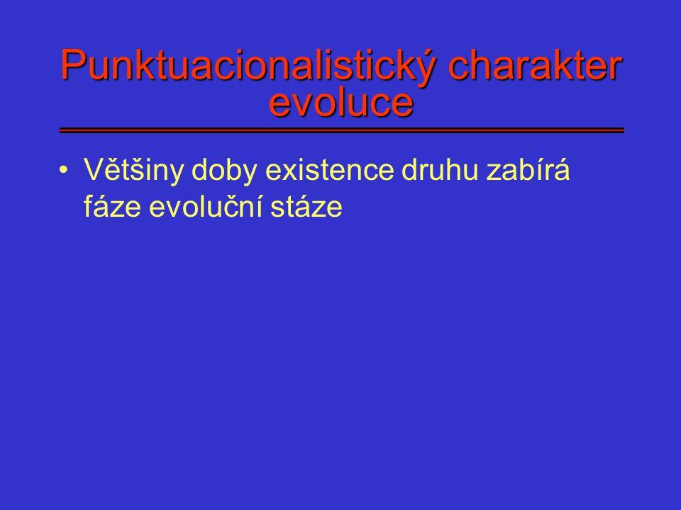 Punktuacionalistický charakter evoluce Většiny doby existence druhu zabírá fáze evoluční stáze