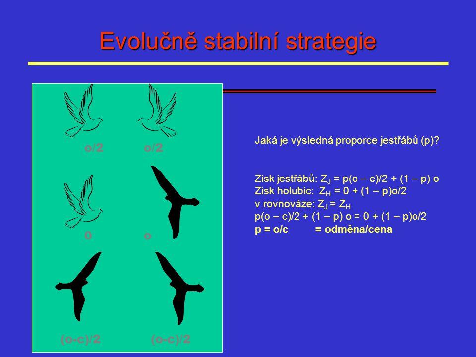 Evolučně stabilní strategie o/2 0o (o-c)/2 Jaká je výsledná proporce jestřábů (p)? Zisk jestřábů: Z J = p(o – c)/2 + (1 – p) o Zisk holubic: Z H = 0 +