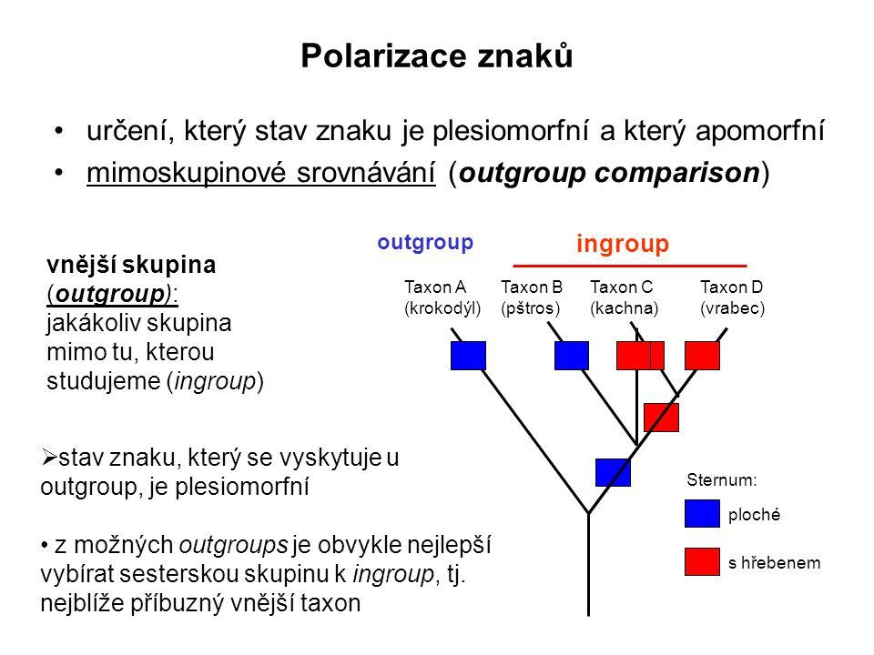 Polarizace znaků určení, který stav znaku je plesiomorfní a který apomorfní mimoskupinové srovnávání (outgroup comparison) vnější skupina (outgroup):