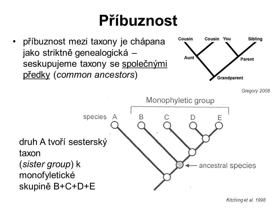 Příbuznost příbuznost mezi taxony je chápana jako striktně genealogická – seskupujeme taxony se společnými předky (common ancestors) druh A tvoří sest