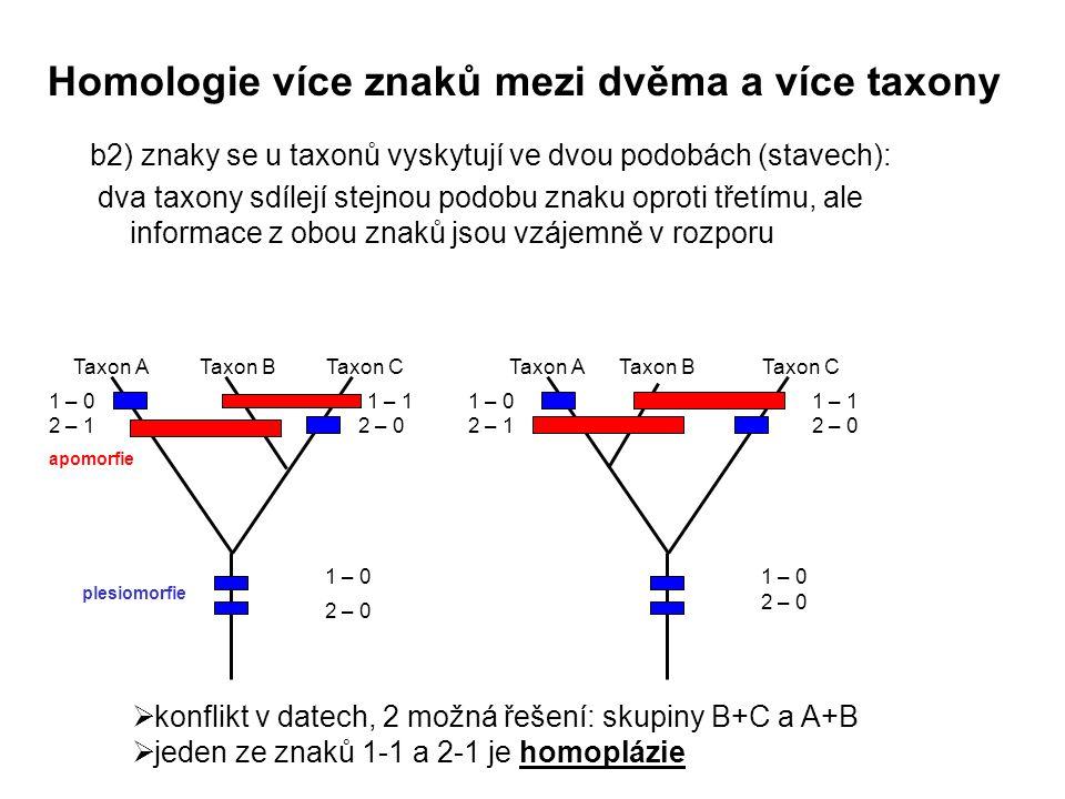 b2) znaky se u taxonů vyskytují ve dvou podobách (stavech): dva taxony sdílejí stejnou podobu znaku oproti třetímu, ale informace z obou znaků jsou vz