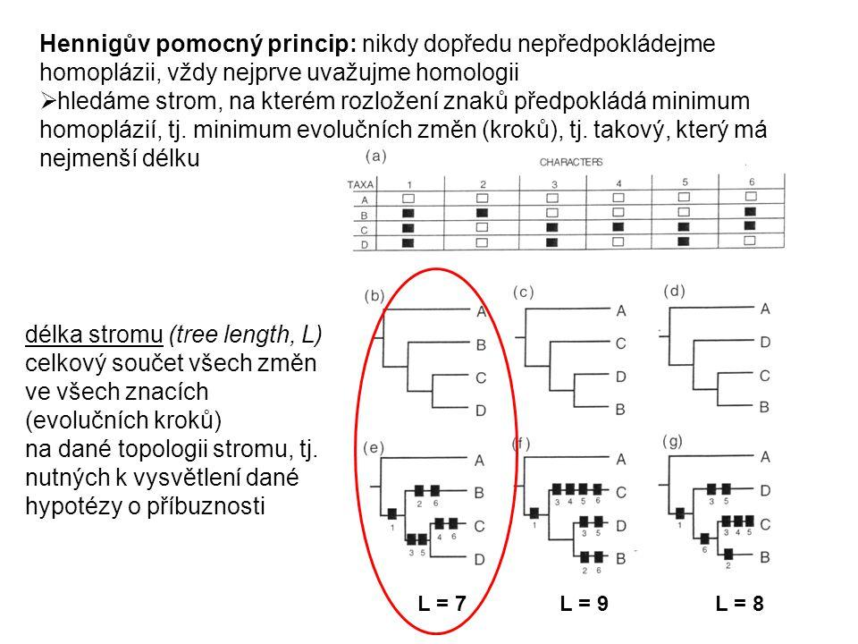 Hennigův pomocný princip: nikdy dopředu nepředpokládejme homoplázii, vždy nejprve uvažujme homologii  hledáme strom, na kterém rozložení znaků předpo