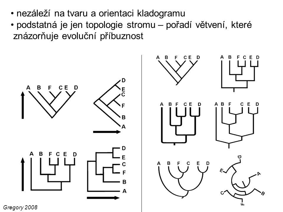 Gregory 2008 nezáleží na tvaru a orientaci kladogramu podstatná je jen topologie stromu – pořadí větvení, které znázorňuje evoluční příbuznost