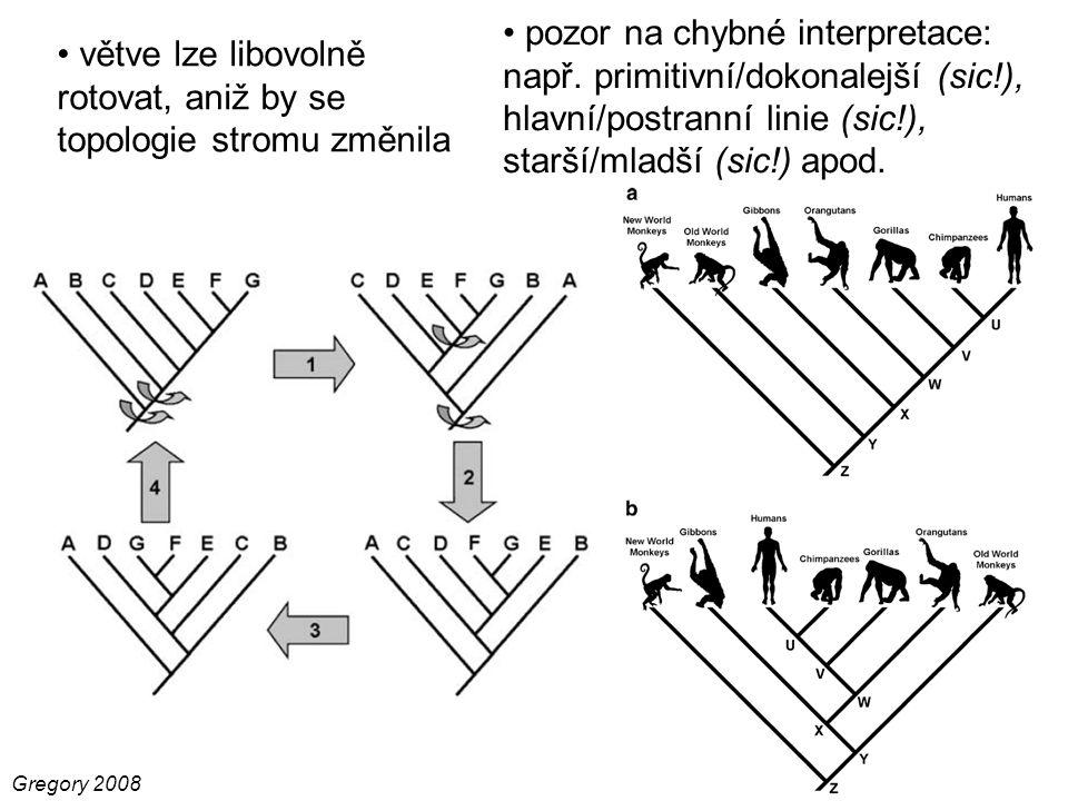 větve lze libovolně rotovat, aniž by se topologie stromu změnila Gregory 2008 pozor na chybné interpretace: např. primitivní/dokonalejší (sic!), hlavn