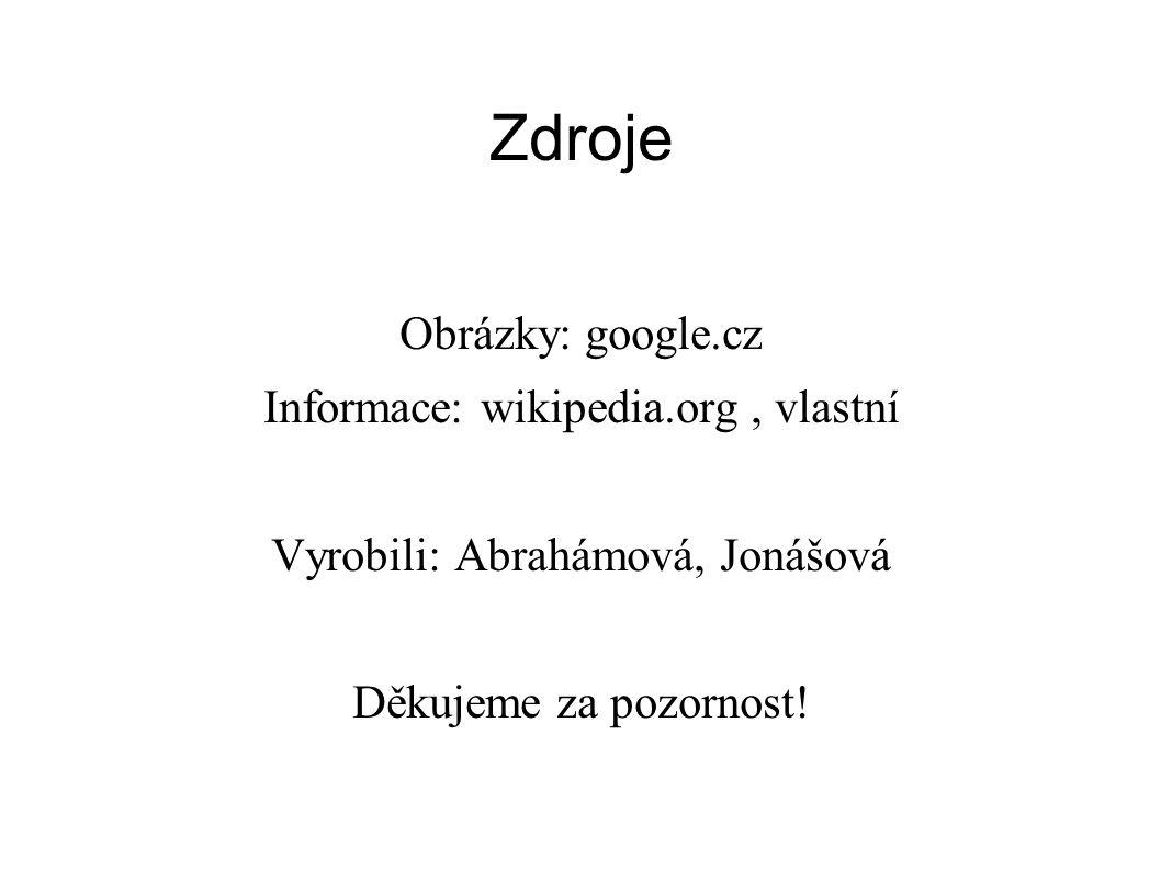 Zdroje Obrázky: google.cz Informace: wikipedia.org, vlastní Vyrobili: Abrahámová, Jonášová Děkujeme za pozornost!