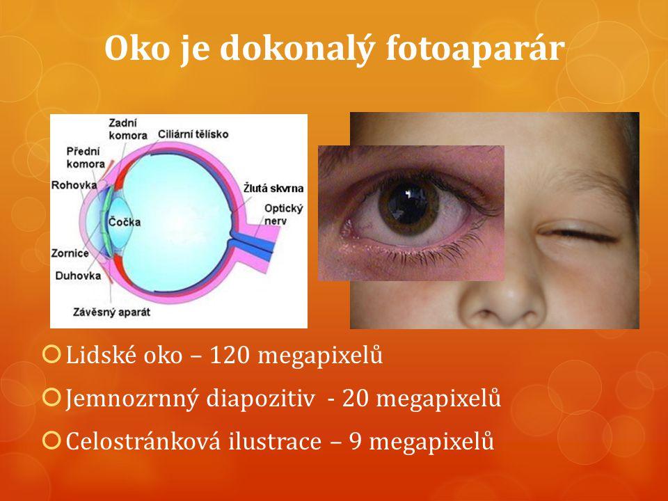 Oko je dokonalý fotoaparár  Lidské oko – 120 megapixelů  Jemnozrnný diapozitiv - 20 megapixelů  Celostránková ilustrace – 9 megapixelů