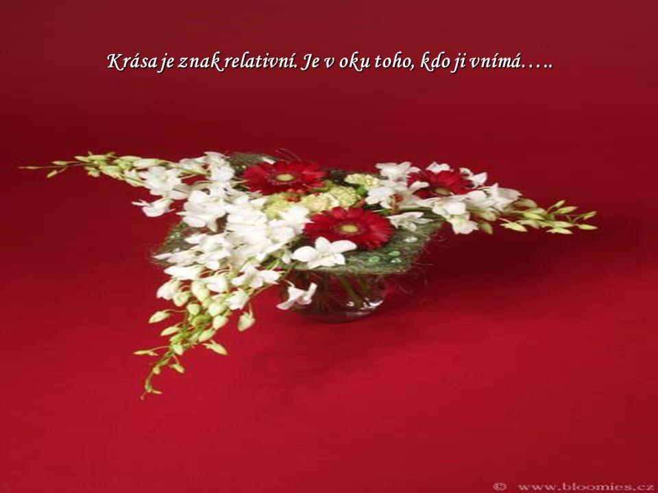 Krása je znak relativní. Je v oku toho, kdo ji vnímá…..