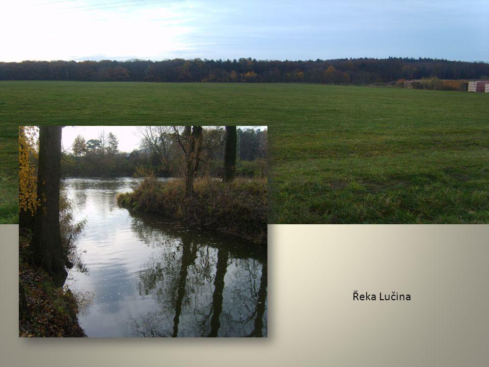 Řeka Lučina