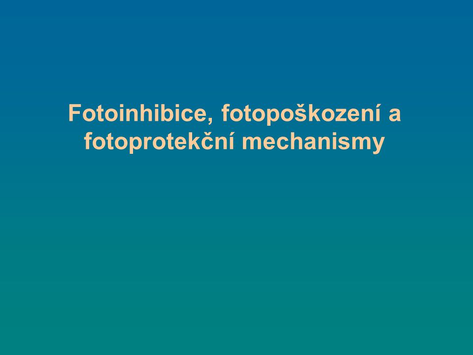 Nefotochemické zhášení fluorescence chlorofylu = fotoprotekce q E – feed-back deexcitation (pH aktivace xantofylů - disipace) q T – state transition (fosforylace LHCII) q I – fotoinhibice (poškozené fotosystémy disipují)