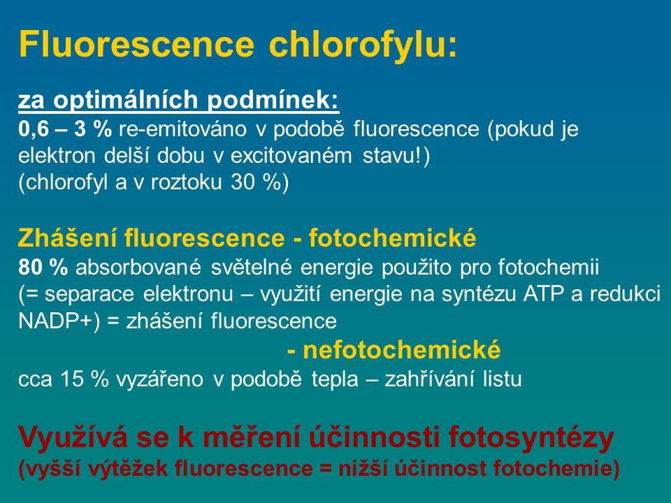 za optimálních podmínek: 0,6 – 3 % re-emitováno v podobě fluorescence (pokud je elektron delší dobu v excitovaném stavu!) (chlorofyl a v roztoku 30 %)