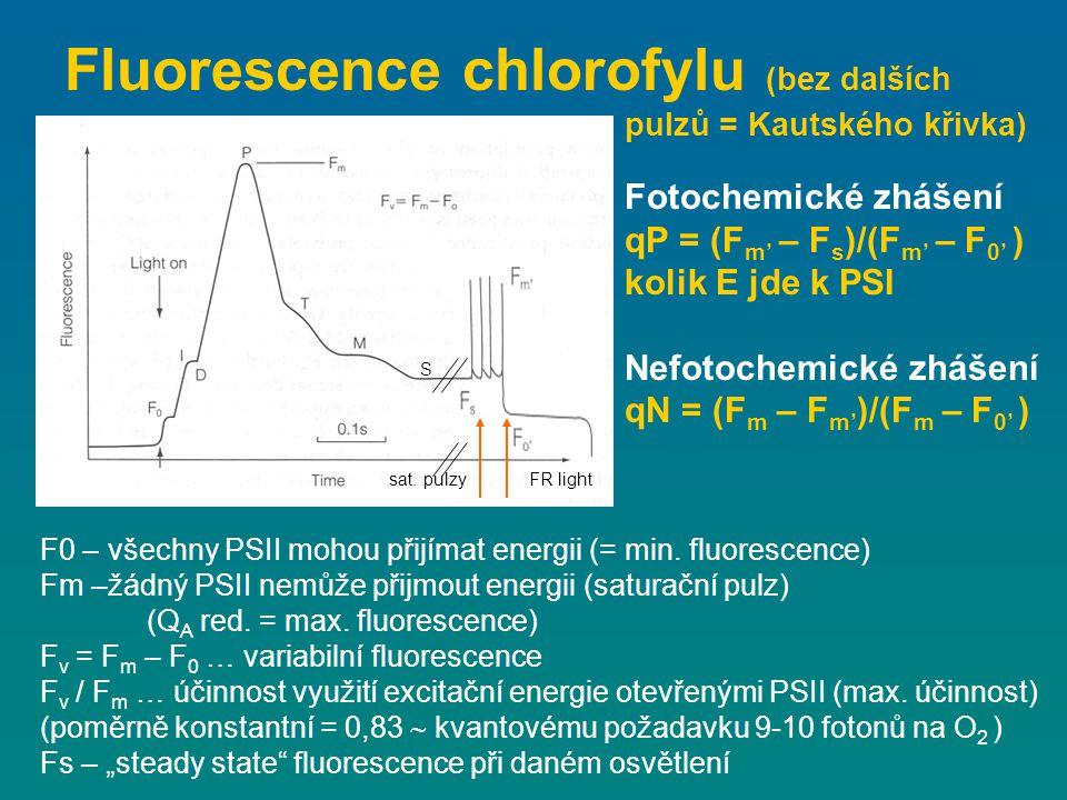 Fluorescence chlorofylu (bez dalších pulzů = Kautského křivka) F0 – všechny PSII mohou přijímat energii (= min. fluorescence) Fm –žádný PSII nemůže př