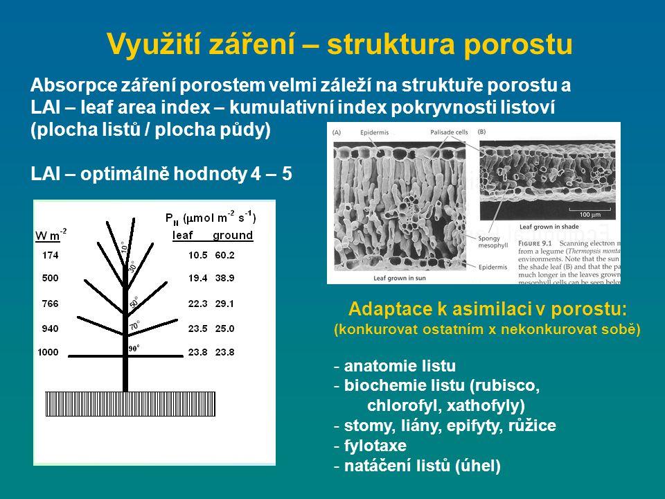Absorpce záření porostem velmi záleží na struktuře porostu a LAI – leaf area index – kumulativní index pokryvnosti listoví (plocha listů / plocha půdy
