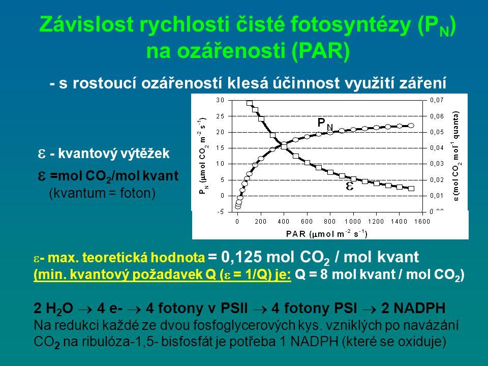  - kvantový výtěžek  =mol CO 2 /mol kvant (kvantum = foton) Závislost rychlosti čisté fotosyntézy (P N ) na ozářenosti (PAR) - s rostoucí ozářeností
