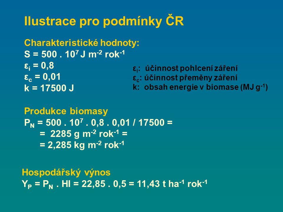 Charakteristické hodnoty: S = 500. 10 7 J m -2 rok -1 ε i = 0,8 ε c = 0,01 k = 17500 J Produkce biomasy P N = 500. 10 7. 0,8. 0,01 / 17500 = = 2285 g