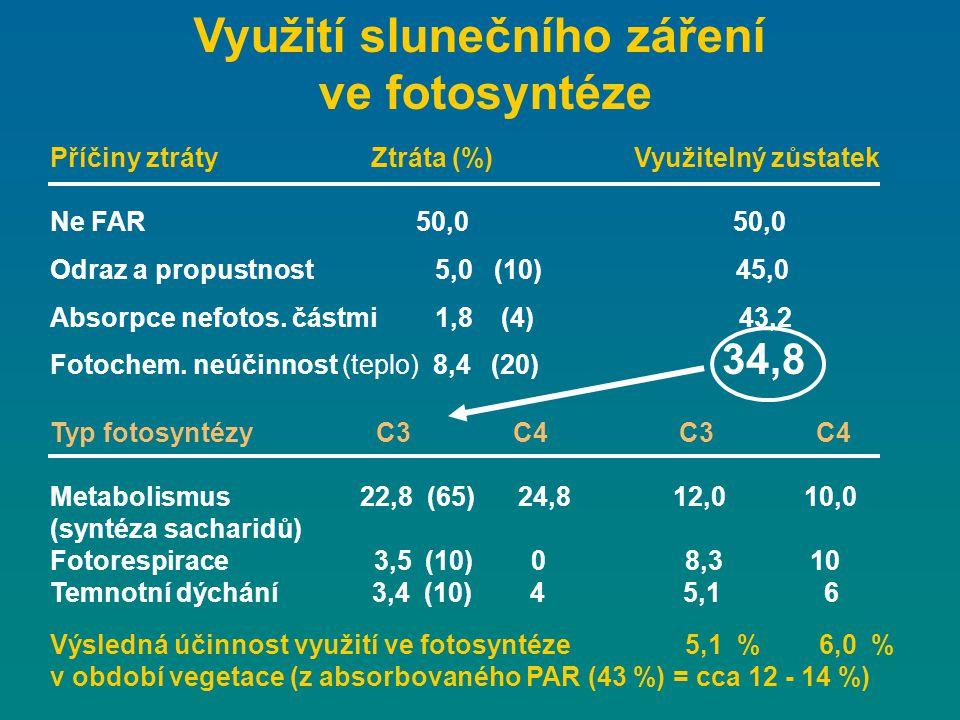 Využití slunečního záření ve fotosyntéze Příčiny ztráty Ztráta (%) Využitelný zůstatek Ne FAR 50,0 50,0 Odraz a propustnost 5,0 (10) 45,0 Absorpce nef