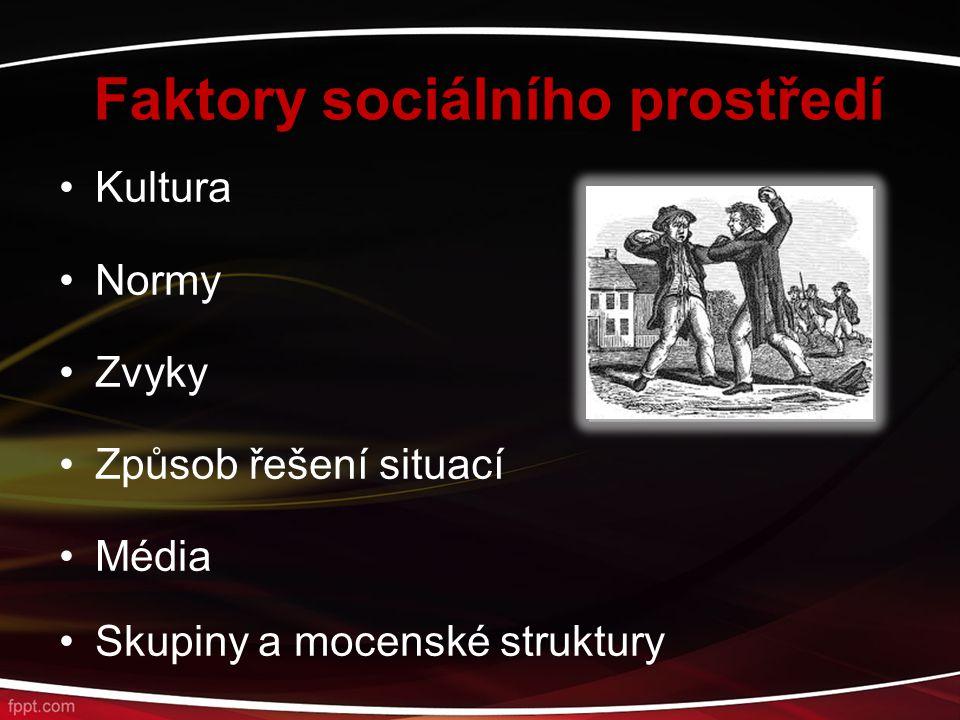Faktory sociálního prostředí Kultura Normy Zvyky Způsob řešení situací Média Skupiny a mocenské struktury
