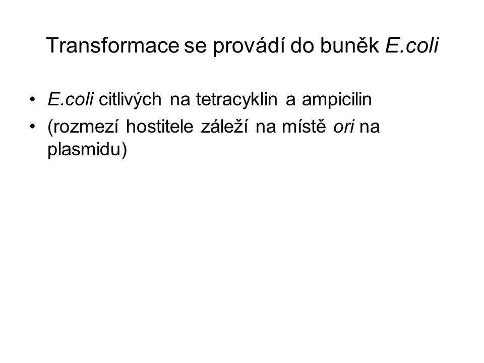 Transformace se provádí do buněk E.coli E.coli citlivých na tetracyklin a ampicilin (rozmezí hostitele záleží na místě ori na plasmidu)