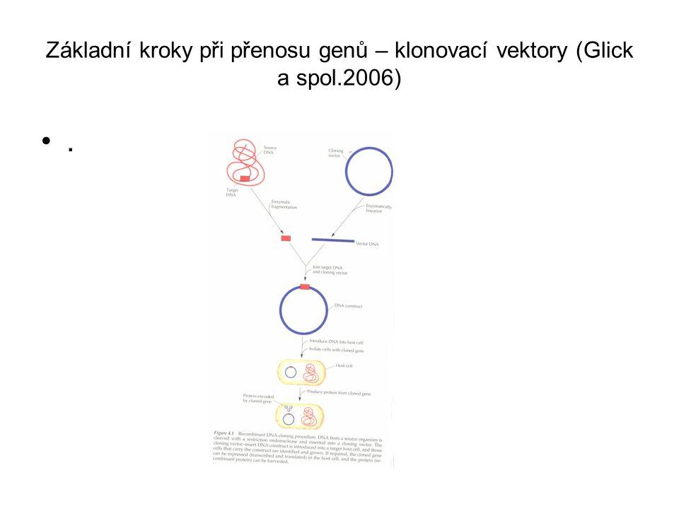 Základní kroky při přenosu genů – klonovací vektory (Glick a spol.2006).