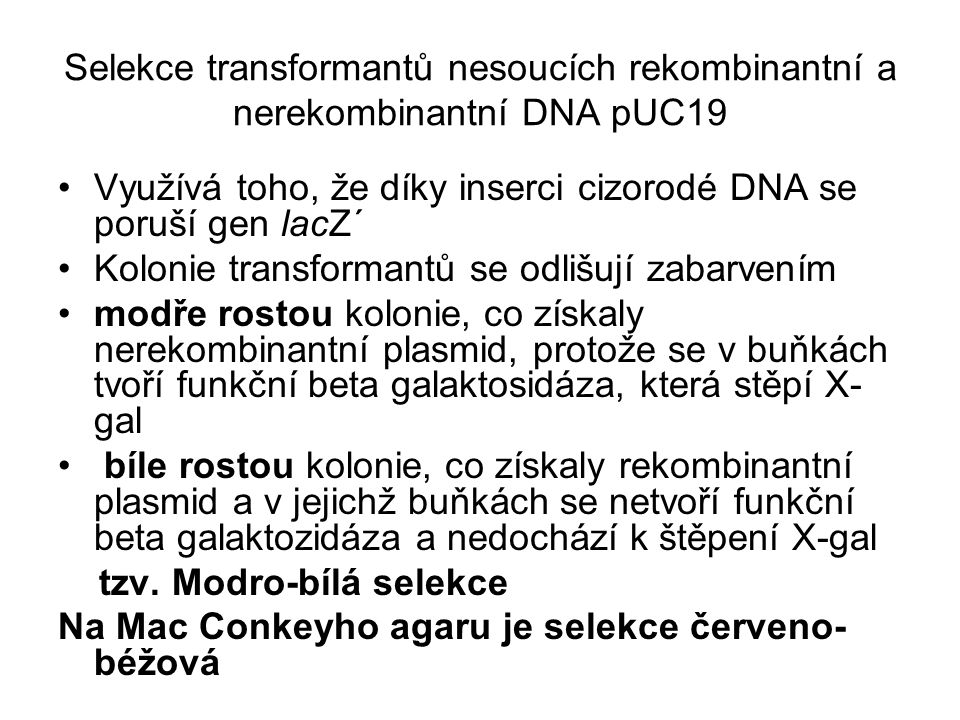 Selekce transformantů nesoucích rekombinantní a nerekombinantní DNA pUC19 Využívá toho, že díky inserci cizorodé DNA se poruší gen lacZ´ Kolonie trans