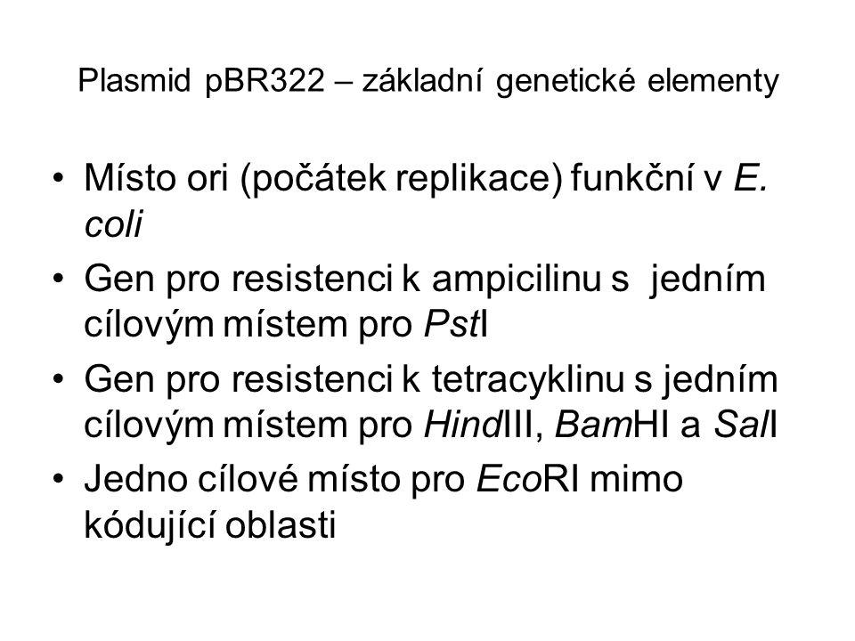 Plasmid pBR322 – základní genetické elementy Místo ori (počátek replikace) funkční v E. coli Gen pro resistenci k ampicilinu s jedním cílovým místem p