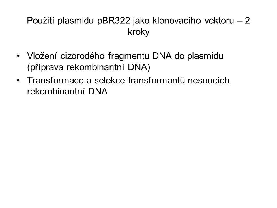 Použití plasmidu pBR322 jako klonovacího vektoru – 2 kroky Vložení cizorodého fragmentu DNA do plasmidu (příprava rekombinantní DNA) Transformace a se