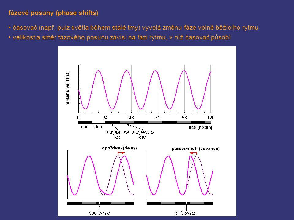 fázové posuny (phase shifts) časovač (např. pulz světla během stálé tmy) vyvolá změnu fáze volně běžícího rytmu velikost a směr fázového posunu závisí