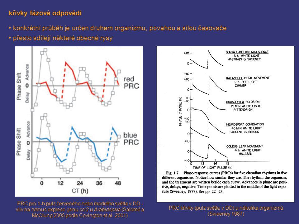 křivky fázové odpovědi konkrétní průběh je určen druhem organizmu, povahou a sílou časovače přesto sdílejí některé obecné rysy PRC pro 1-h pulz červen