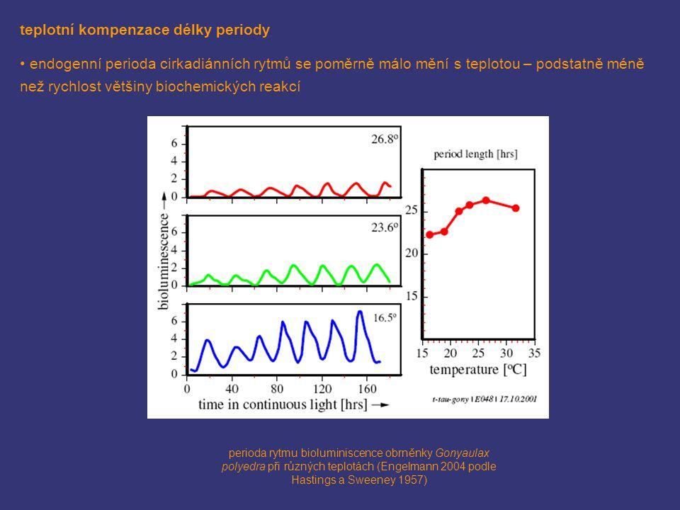 teplotní kompenzace délky periody endogenní perioda cirkadiánních rytmů se poměrně málo mění s teplotou – podstatně méně než rychlost většiny biochemi