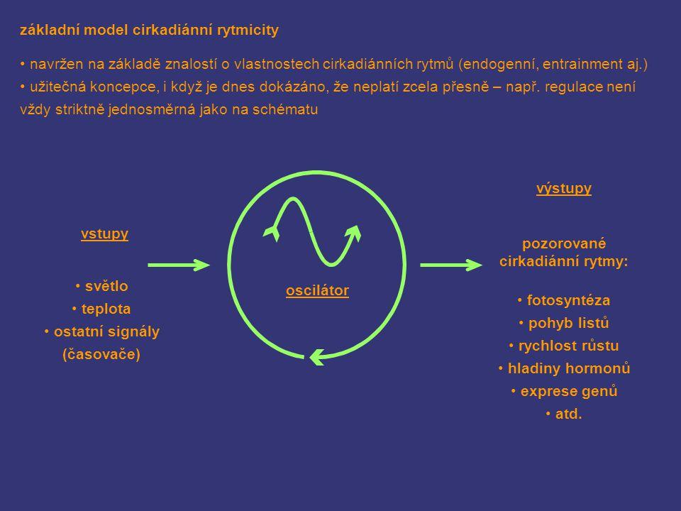 základní model cirkadiánní rytmicity navržen na základě znalostí o vlastnostech cirkadiánních rytmů (endogenní, entrainment aj.) užitečná koncepce, i