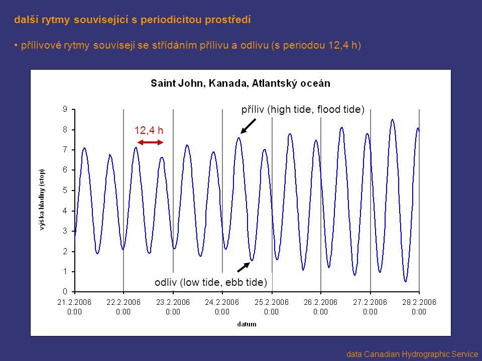 další rytmy související s periodicitou prostředí přílivové rytmy souvisejí se střídáním přílivu a odlivu (s periodou 12,4 h) data Canadian Hydrographi