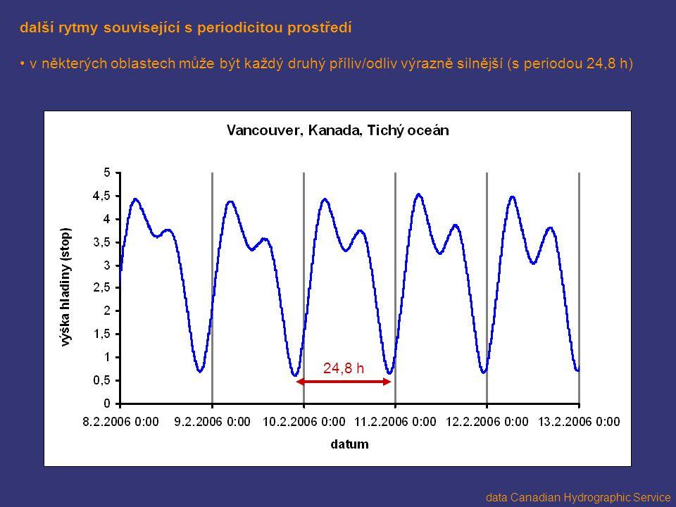 další rytmy související s periodicitou prostředí v některých oblastech může být každý druhý příliv/odliv výrazně silnější (s periodou 24,8 h) data Can
