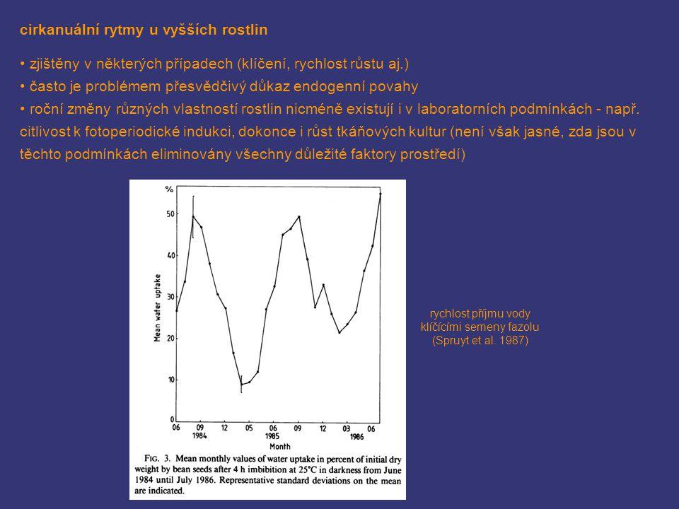 rychlost příjmu vody klíčícími semeny fazolu (Spruyt et al. 1987) cirkanuální rytmy u vyšších rostlin zjištěny v některých případech (klíčení, rychlos